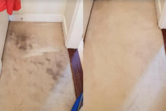 carpet-cleaning-services-portsmouth